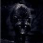Avatar de WolfAbstract