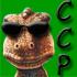 Avatar de CCP Pluto
